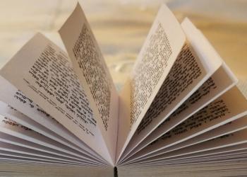 Превед, как дела… или где переводчик с иврита на русский?